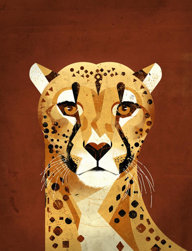 Cheetah by Dieter
